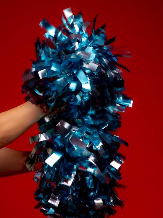 Foto 5: De leukste Cheerleading experience!