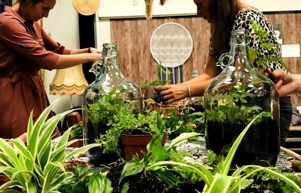 Foto 3: Maak je eigen plantenterrarium in een mooie glazen fles