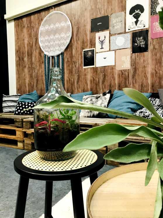 Foto 2: Maak je eigen plantenterrarium in een mooie glazen fles