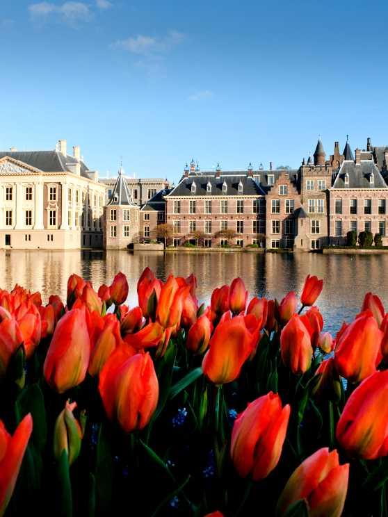 Foto 5: Stadstour Den Haag - Ontdek Den Haag tijdens een inspirerende fotografie workshop