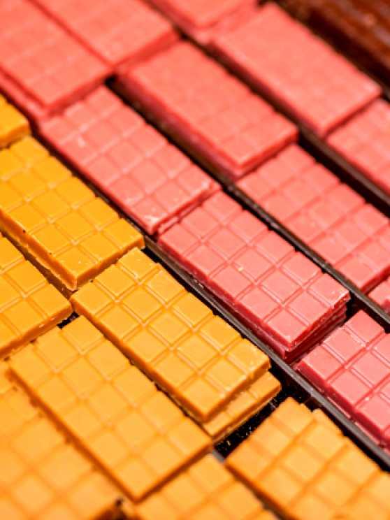 Foto 1: Chocolade workshop 'Van Cacaoboon tot heerlijke Belgische chocolade'