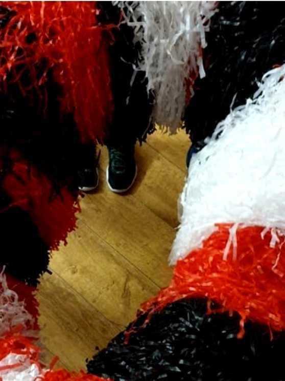 Foto 2: Cheerleading workshop